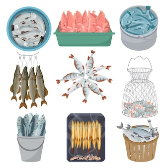 Poisson frais vecteur brochet de truite de saumon de mer crue au marché de la pêche illustration de fruits de mer net