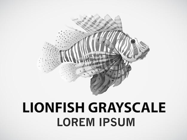 Poisson lion
