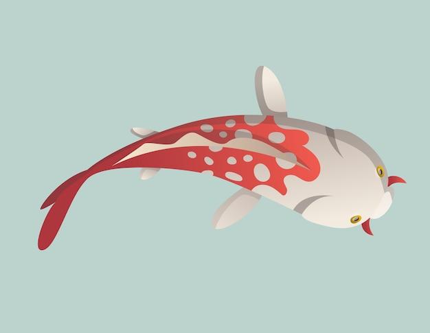 Poisson rouge chinois, pêche traditionnelle isolée sur fond