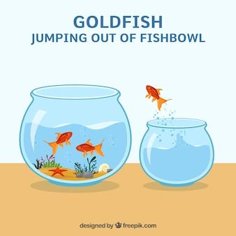 Goldfish morts t l charger des photos gratuitement - Poisson rouge gratuit ...