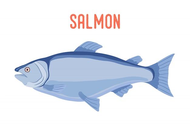 Poisson de saumon, fruits de mer frais.