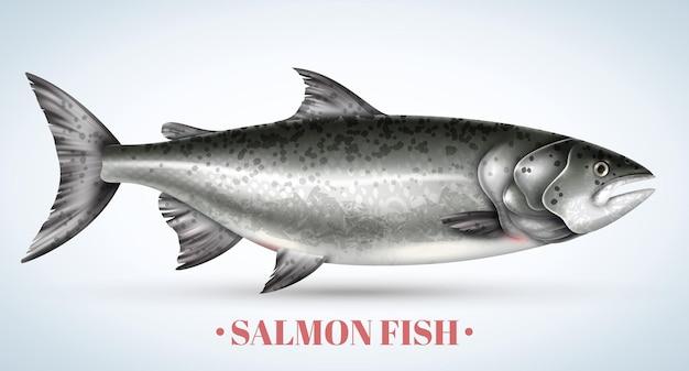 Poisson saumon réaliste sur illustration vectorielle fond clair