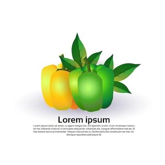 Poivre sur fond blanc, mode de vie sain ou concept de régime alimentaire, logo pour les légumes frais