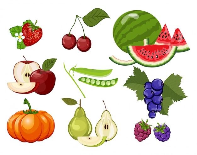 Pomme, citrouille, cerise douce, cerise, groseille, pois vert, raisin, pastèque, poire, pomme. illustration de fruits
