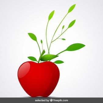 Pomme isolé avec des ornements