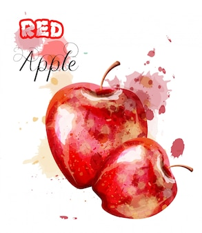Pomme rouge aquarelle