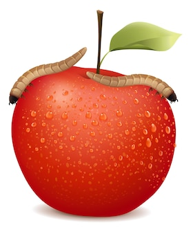 Pomme rouge avec deux vers dessus