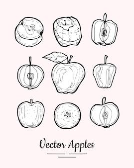 Pommes isolées. collection de fruits dessinés à la main. menu végétarien à la mode, fruits