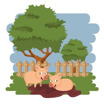 Porcs dans la boue