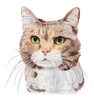 Portrait à l'aquarelle d'un chat aux yeux verts