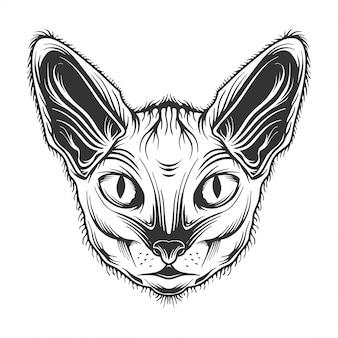 Portrait de chat oriental monochrome, tête de minou, image, style rétro. isolé sur blanc