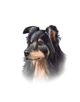 Portrait de chien aquarelle peint à la main