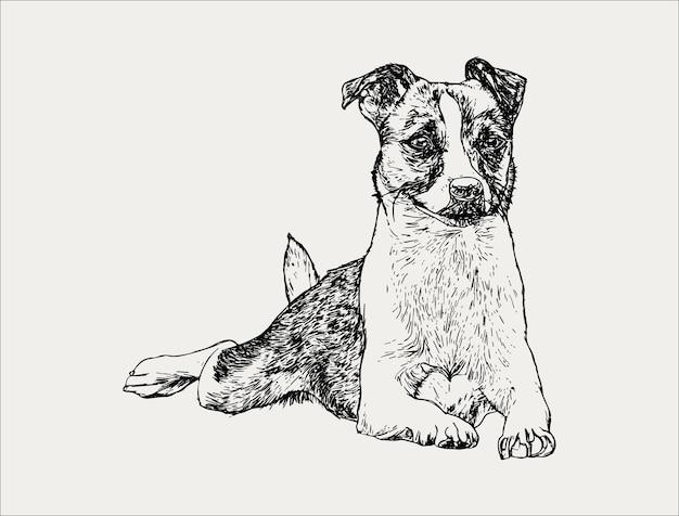 Portrait dessiné à la main d'un chien joyeux