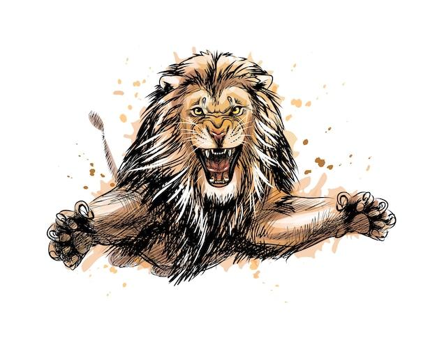 Portrait d'un lion sautant d'une éclaboussure d'aquarelle, croquis dessiné à la main. illustration de peintures