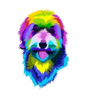 Portrait de tête de chien labradoodle de peintures multicolores éclaboussure de dessin coloré à l'aquarelle