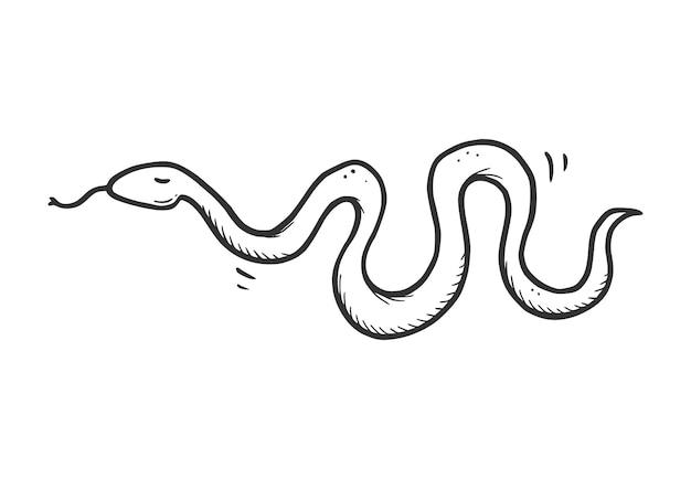 Pose de serpent serpent du désert dessiné à la main. style de croquis de griffonnage. icône de serpent simple ligne de dessin. illustration vectorielle isolée.
