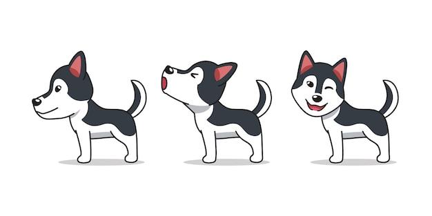 Poses de chien husky sibérien de personnage de dessin animé
