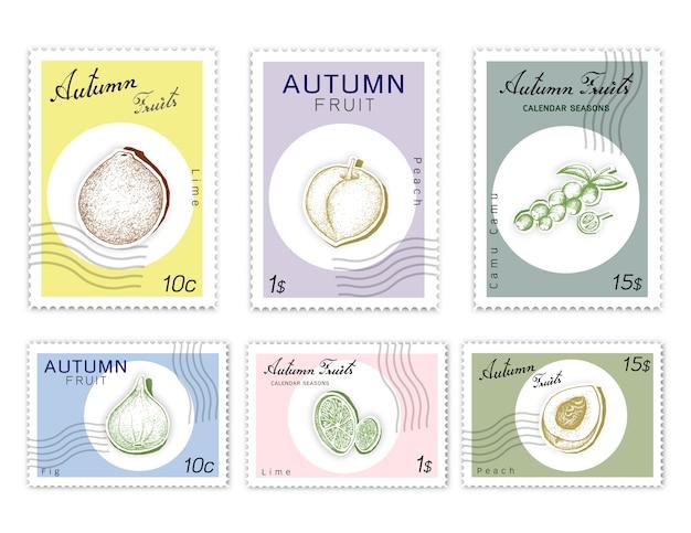 Post stamps set de fruits d'automne avec du papier découpé