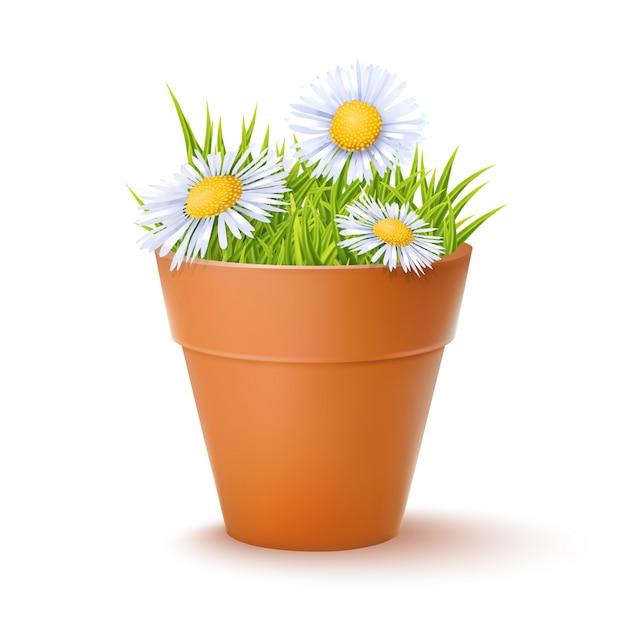 Pot de fleurs avec des fleurs