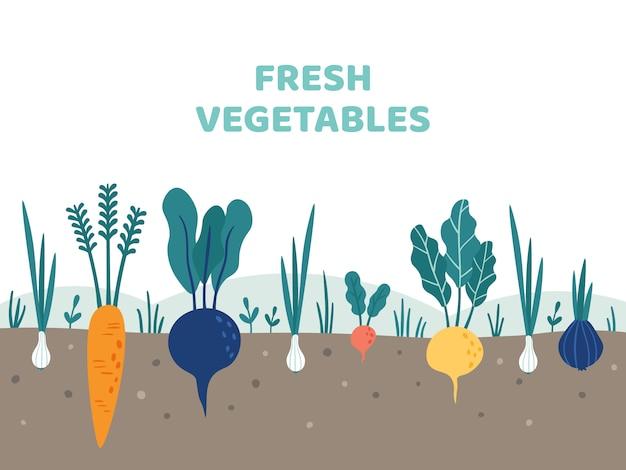 Potager. jardinage de légumes, jardins de pommes de terre et illustration de jardiniers d'été