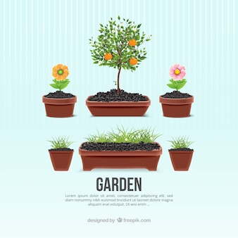 Pots de fleurs de jardin