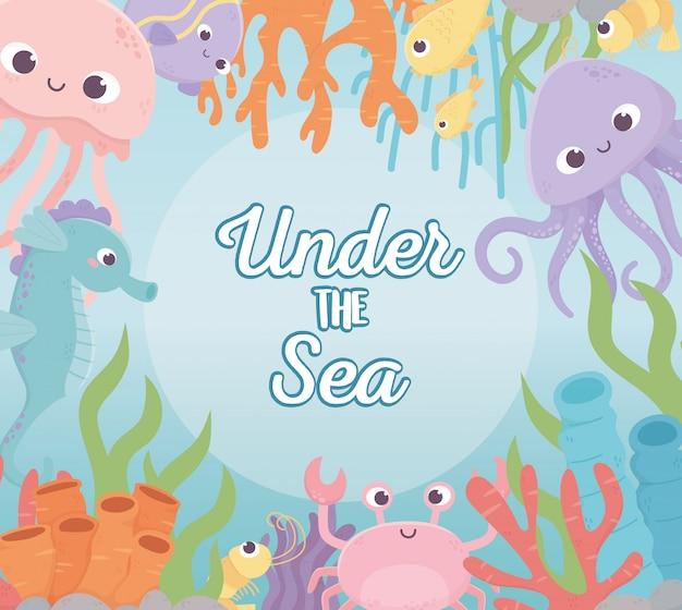 Poulpe méduse crabe poissons crevettes vie récif de corail dessin animé sous la mer