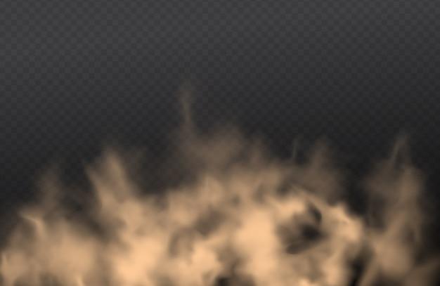 Poussière, nuage de sable, pulvérisation de poudre, smog sur fond transparent