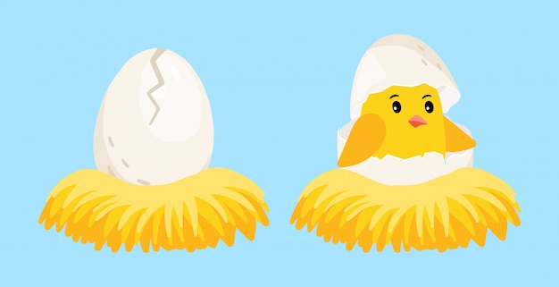 Poussin nouveau-né. oeuf de dessin animé et poussin éclos avec coquille d'oeuf sur la tête dans l'illustration vectorielle de nid