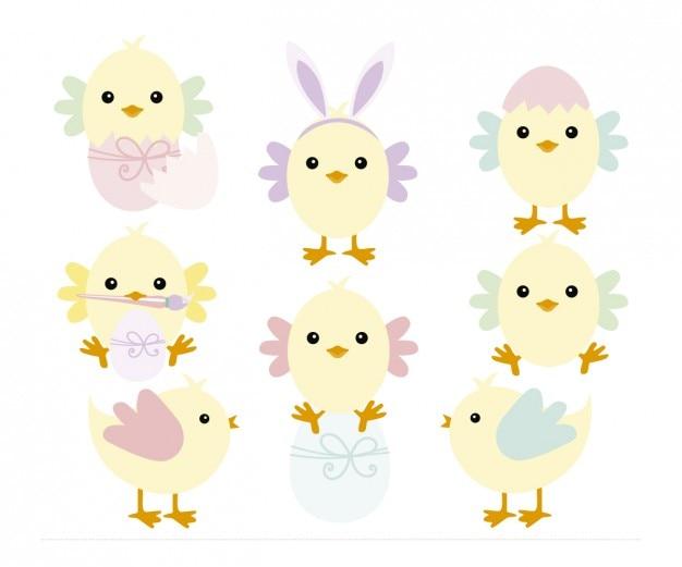 Poussins jouant avec les œufs