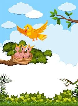 Poussins et sa mère oiseau dans la nature