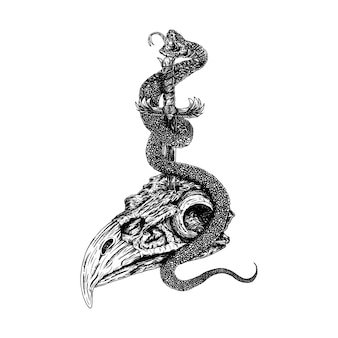 Pouvoir animalier, dessin illustrasion serpent aigle