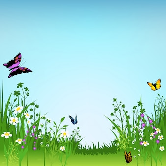 Prairie fleurie et fond de papillons
