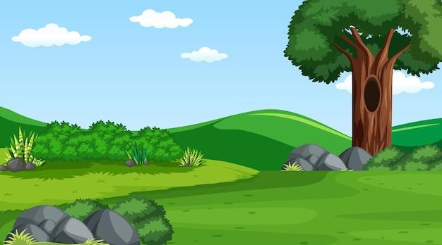 Prairie vierge à la scène de jour avec divers arbres forestiers