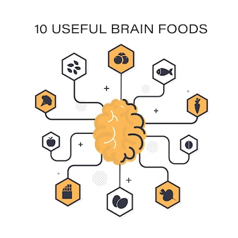 Principaux produits utiles pour le cerveau: baies, poisson, carottes, noix, betteraves, œufs, chocolat, pomme, brocoli, graines.