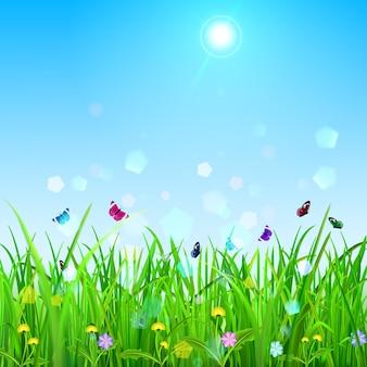 Printemps avec ciel, soleil, herbe, fleurs et papillons