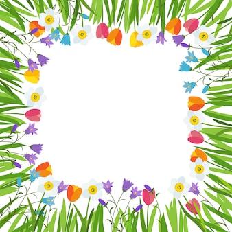 Printemps tulipe, bluebell, fond de fleurs de narcisse