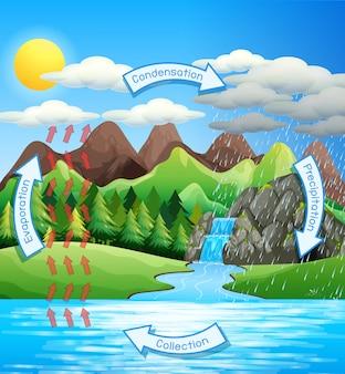 Processus du cycle de l'eau sur terre - scientifique