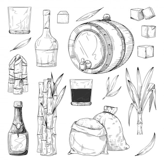 Production de rhum. canne à sucre ou canne à sucre avec des feuilles, bouteille de rhum et verre, cubes de sucre, sac, icônes de croquis de baril. collection dessinée à la main vintage. production de boissons alcoolisées