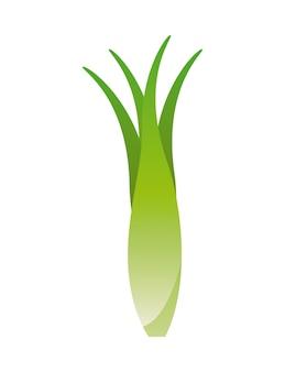 Produit biologique sur fond blanc illustration vectorielle
