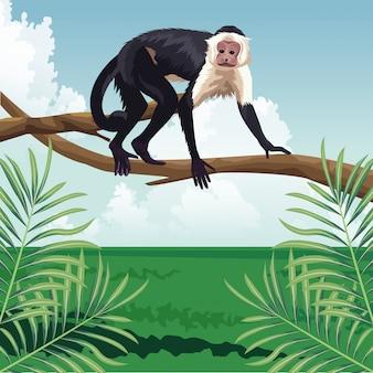 Promenade de singe sur branche paysage de faune et flore tropicale