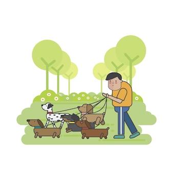 Promeneur de chien promener une meute de chiens