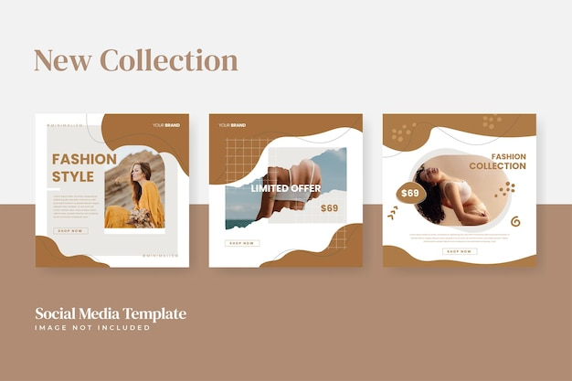 Promotion du modèle de médias sociaux de vente de mode instagram