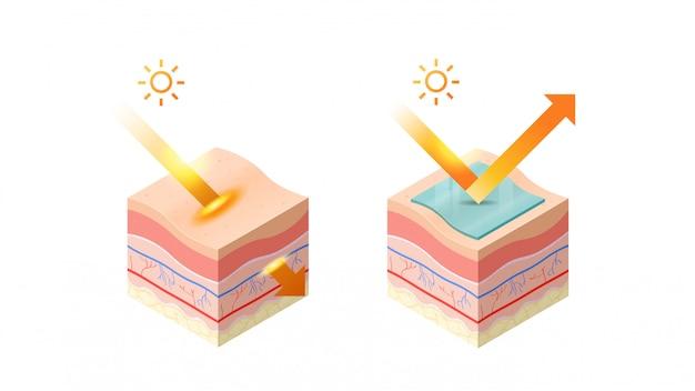 Protection et pénétration des rayons uv du soleil dans l'épiderme de la peau coupe transversale des couches de la peau humaine structure soins de la peau concept médical plat horizontal