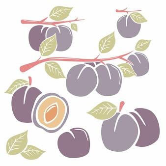 Prunes peintes à la main avec des feuilles