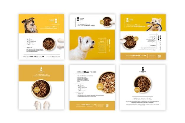 Publications instagram de nourriture pour animaux