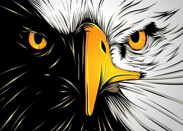 Puissant visage d'aigle