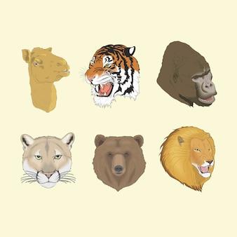 Puma gorille lion ours tigre tête de chameau