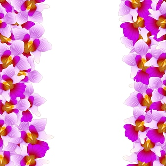 Purple vanda miss joaquim orchid border