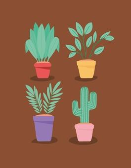 Quatre articles de plantes