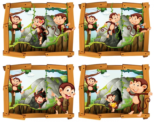 Quatre cadres de singes par la grotte